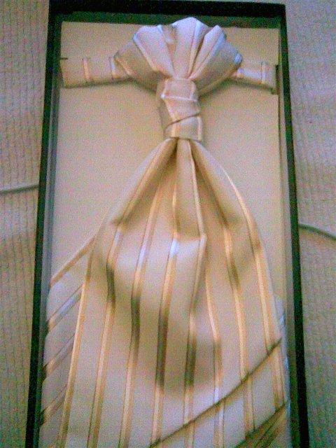 A uz máme komplet aj pre milého....velmi pekná, samozrejme aj s vestou (skoda, ze fotena s telefonom)