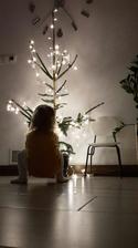 Stromček v kuchyni ;-)