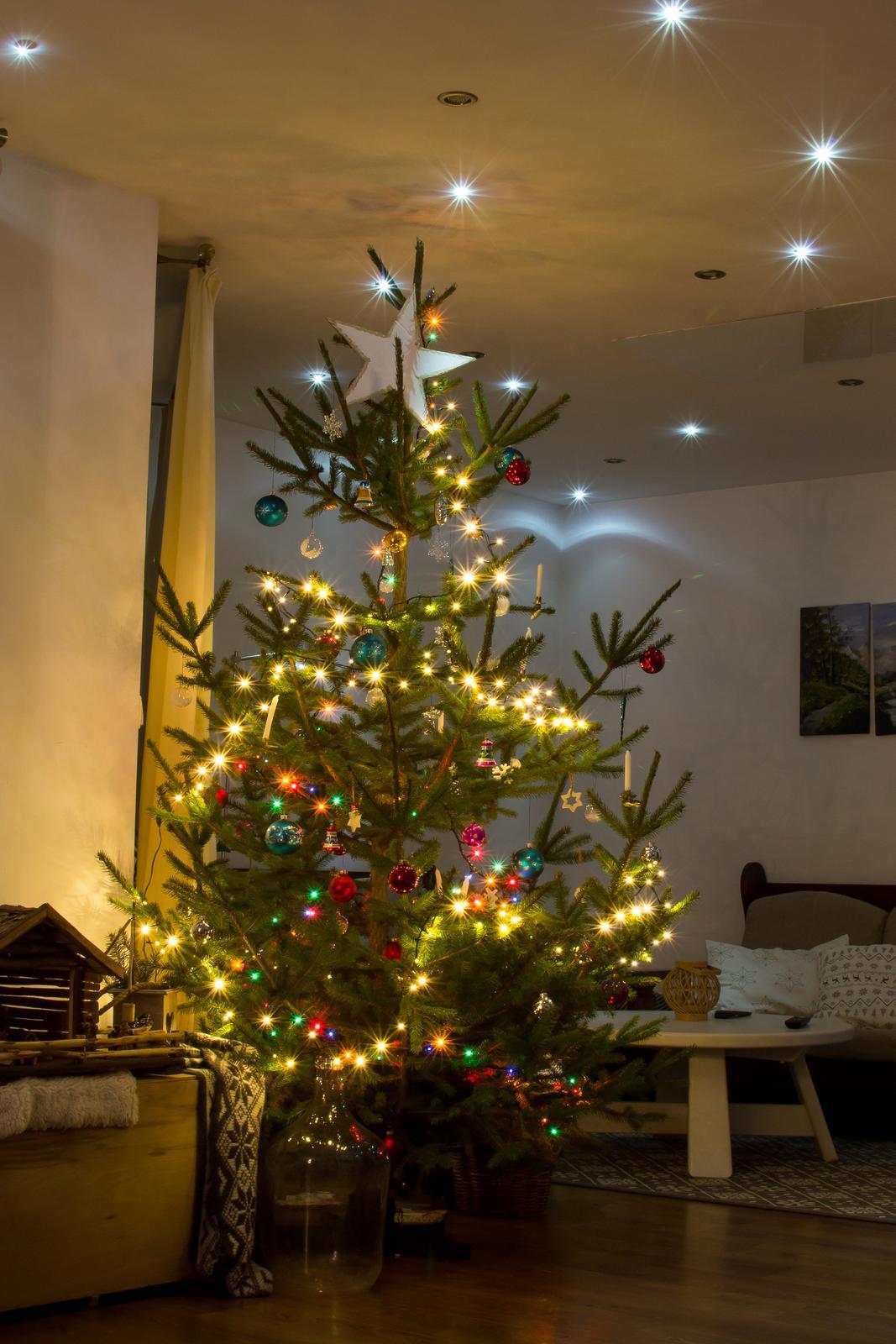 »» Č a s  _ V i a n o c «« - tohtoročný stromček,  v betleheme už zhasnuté :-)