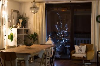 vianočná z jedálne :-)
