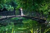 http://www.fotoantal.com/ + 421 908 060 050 + 421 905 326 927 info@fotoantal.sk
