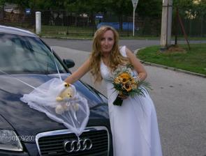 Panenky na auto mají skoro všichni... náš medvídek byl aspoň originální :-)