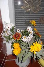 zrejme posledná kytička z vlastnej záhradky .....