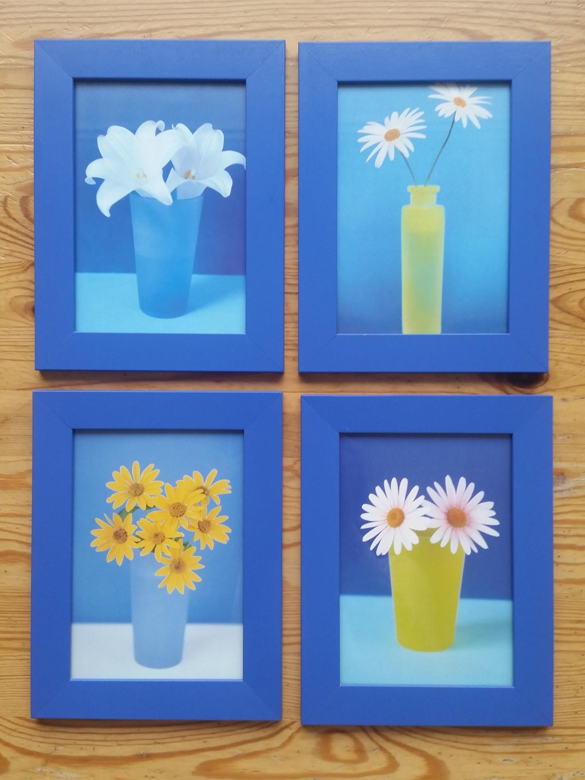 Modré rámečky IKEA s obrázky s motivem květin - Obrázek č. 1