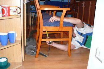 nové židle a asistent Beaneček