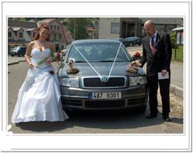 Auto nevěsty a pak společné - a proč hadi (hrajeme šipky za tým Hadi)