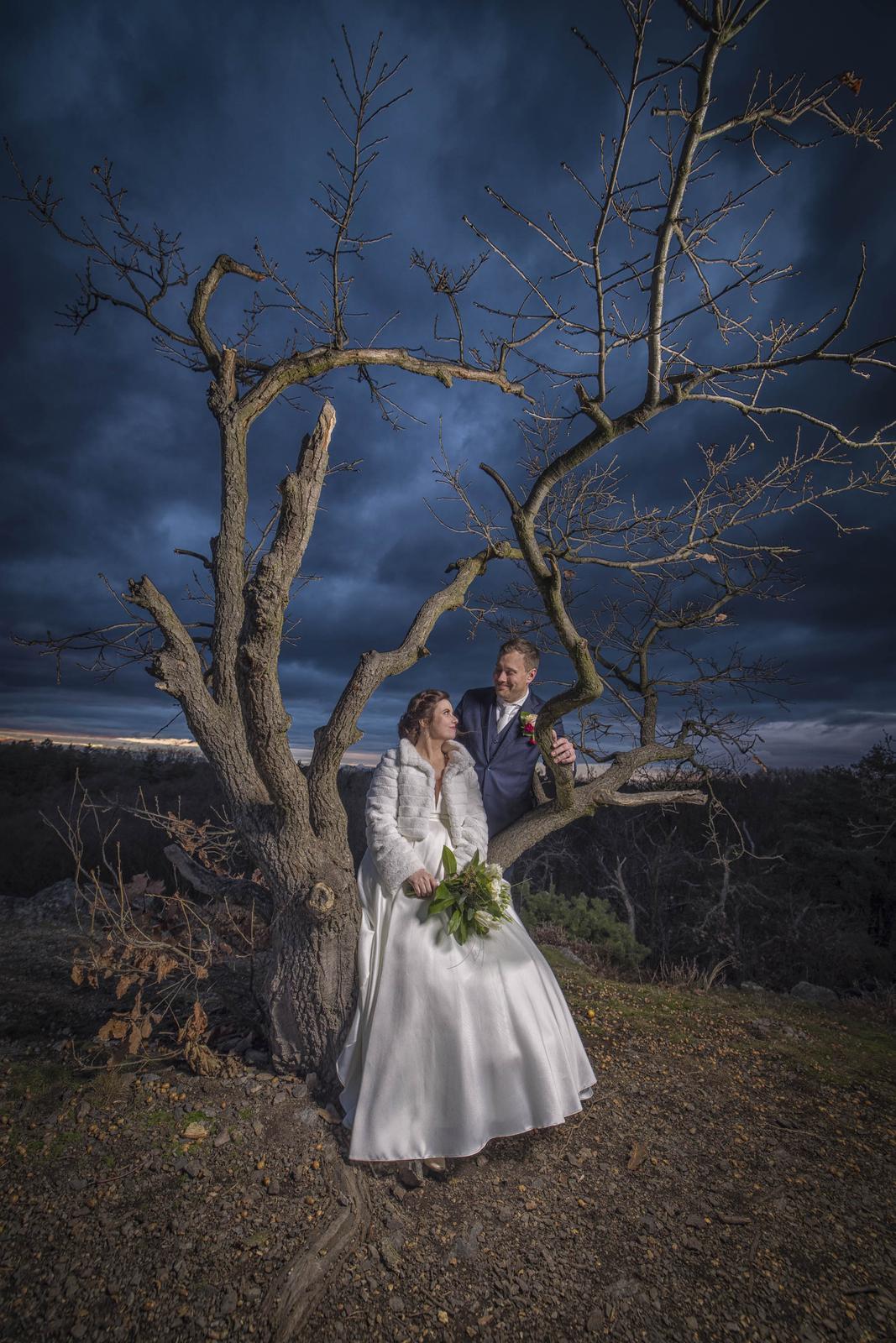 weddingsphoto_cz - Obrázek č. 1