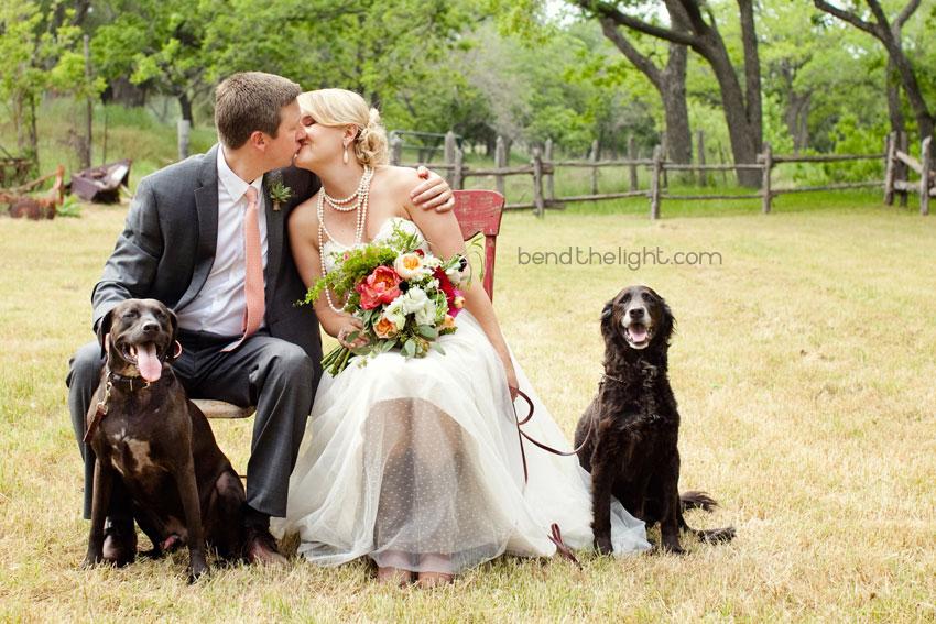 Zvieratká na svadbe 🐾 - Obrázok č. 6