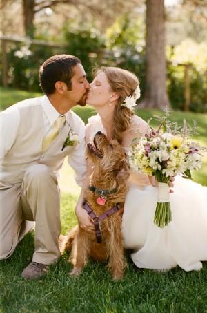 Zvieratká na svadbe 🐾 - Obrázok č. 13