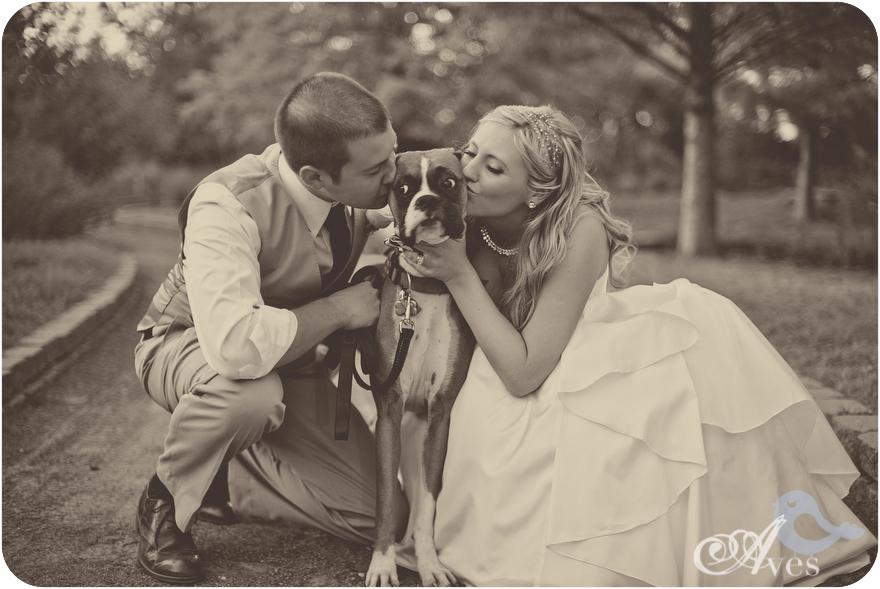 Zvieratká na svadbe 🐾 - Obrázok č. 14