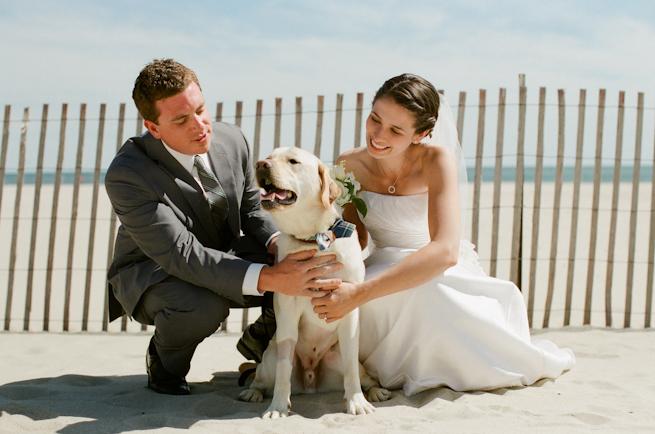 Zvieratká na svadbe 🐾 - Obrázok č. 16