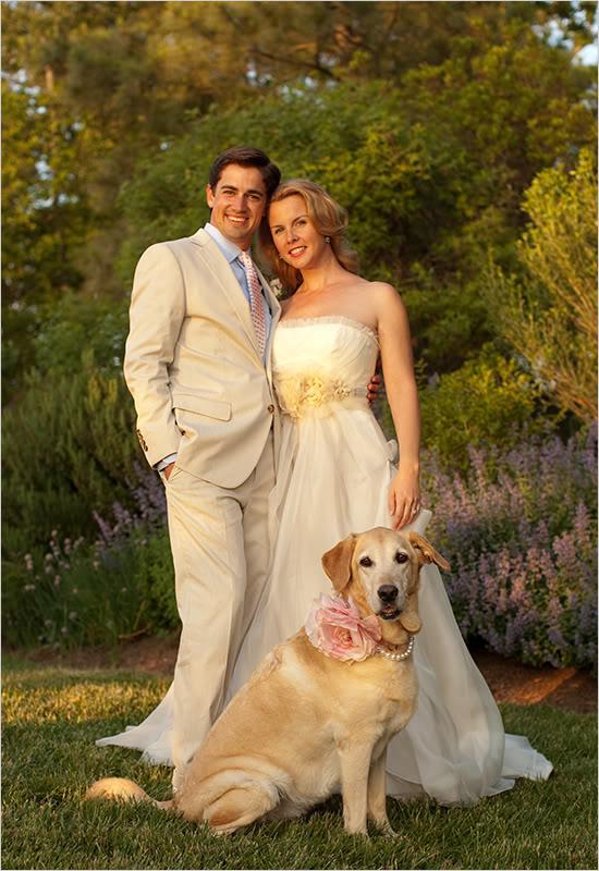 Zvieratká na svadbe 🐾 - Obrázok č. 23