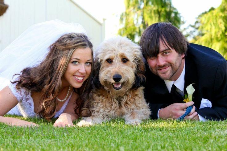 Zvieratká na svadbe 🐾 - Obrázok č. 25