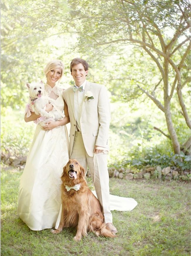 Zvieratká na svadbe 🐾 - Obrázok č. 27
