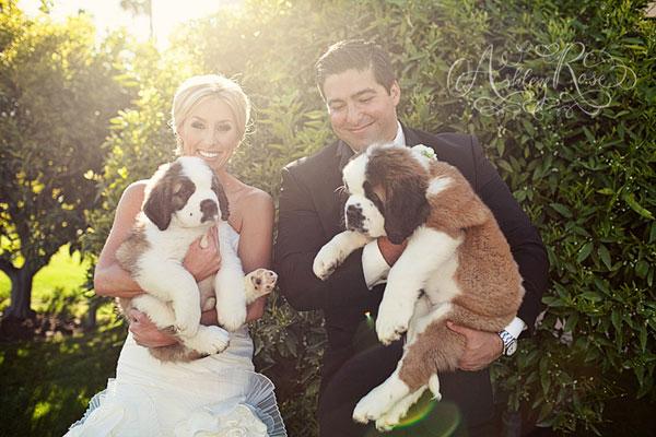 Zvieratká na svadbe 🐾 - Obrázok č. 30