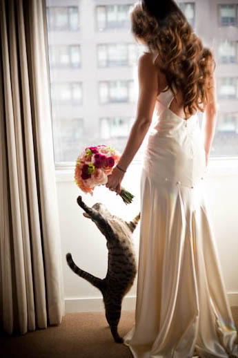 Zvieratká na svadbe 🐾 - Obrázok č. 42