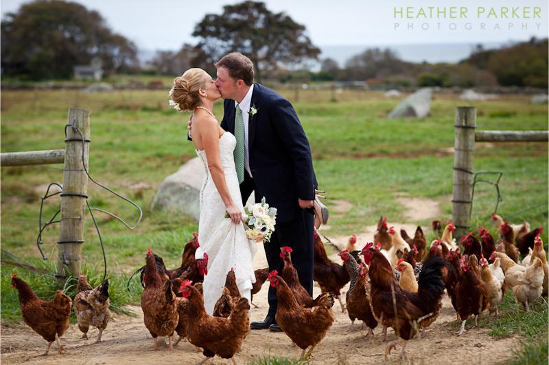 Zvieratká na svadbe 🐾 - Obrázok č. 43