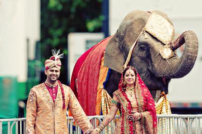Zvieratká na svadbe 🐾 - Obrázok č. 46