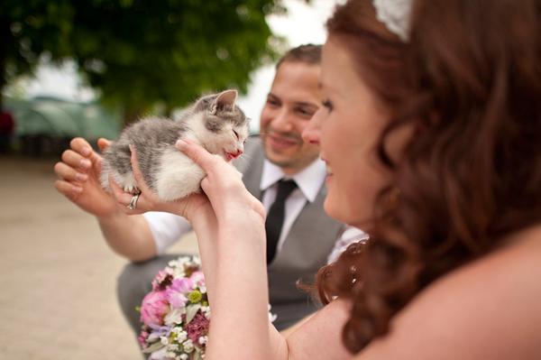 Zvieratká na svadbe 🐾 - Obrázok č. 48