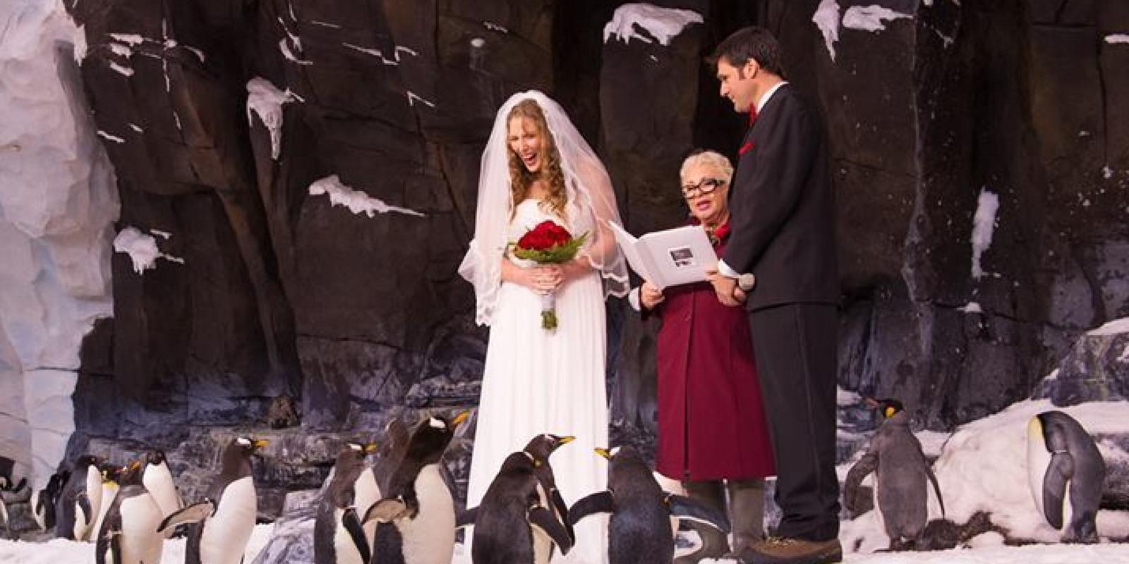Zvieratká na svadbe 🐾 - Obrázok č. 53
