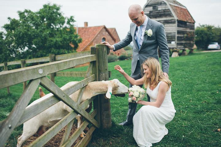 Zvieratká na svadbe 🐾 - Obrázok č. 58