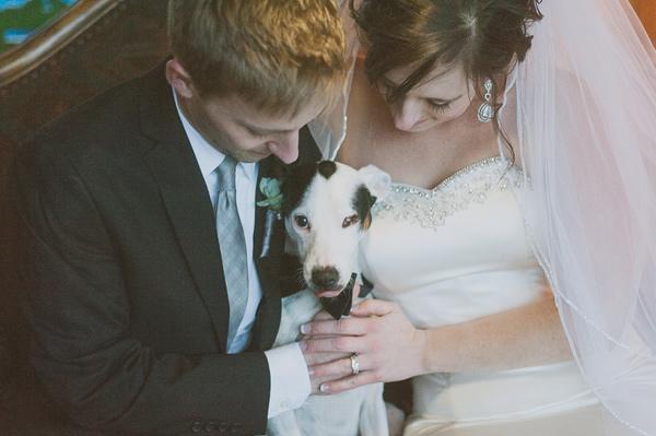 Zvieratká na svadbe 🐾 - Obrázok č. 66