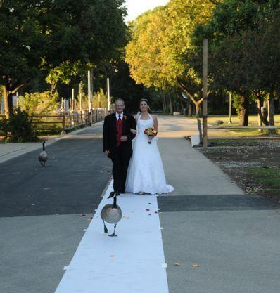 Zvieratká na svadbe 🐾 - Obrázok č. 68
