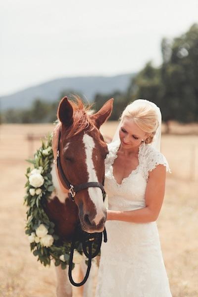 Zvieratká na svadbe 🐾 - Obrázok č. 70