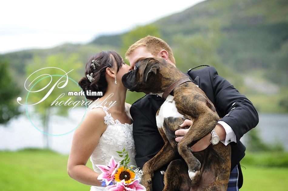 Zvieratká na svadbe 🐾 - Obrázok č. 72