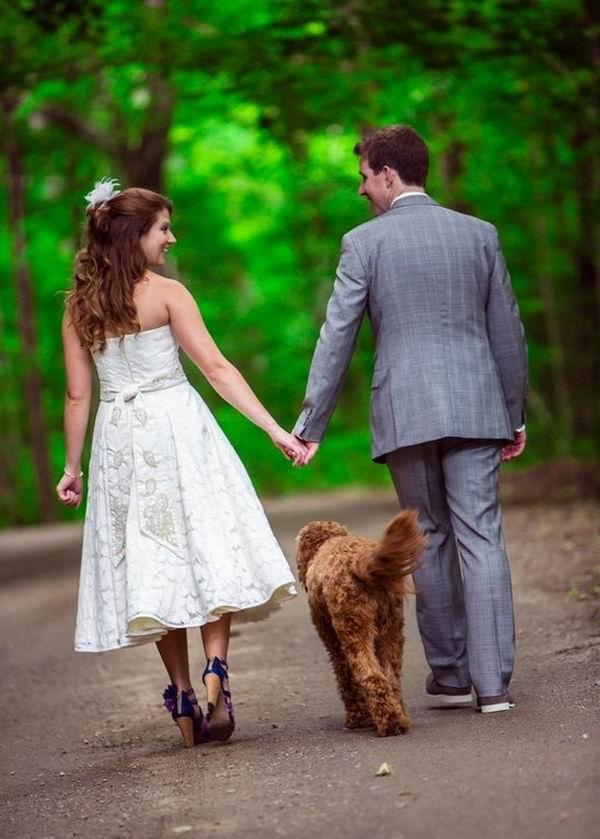 Zvieratká na svadbe 🐾 - Obrázok č. 74