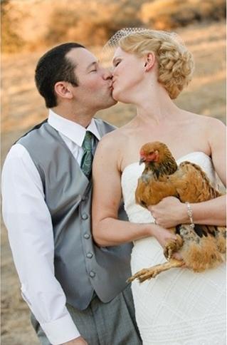 Zvieratká na svadbe 🐾 - Obrázok č. 79