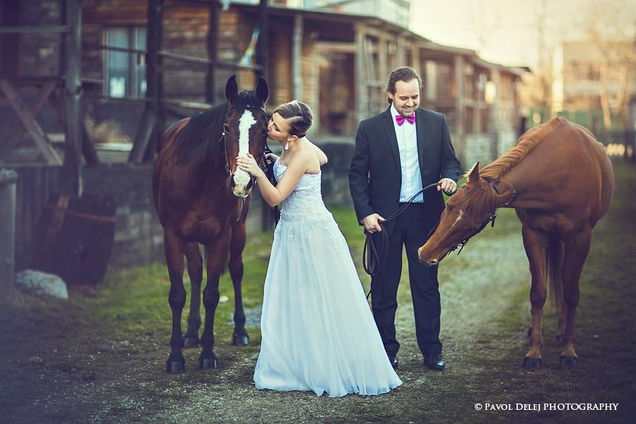 Zvieratká na svadbe 🐾 - Obrázok č. 82