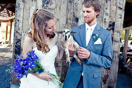 Zvieratká na svadbe 🐾 - Obrázok č. 87