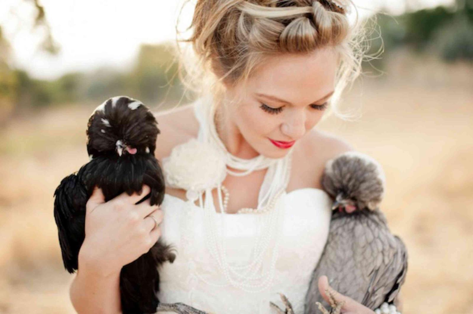 Zvieratká na svadbe 🐾 - Obrázok č. 91