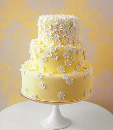 Naša romantic-rustic svadba ♥ - Snáď sa im podarí :-)