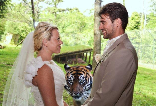 Zvieratká na svadbe 🐾 - Obrázok č. 96