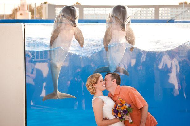 Zvieratká na svadbe 🐾 - Obrázok č. 99
