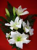 veľká kytica  do vázy,