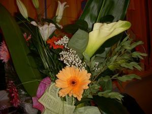 mali sme vela kvetov