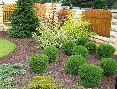 Inšpirácia - záhrada - Obrázok č. 43