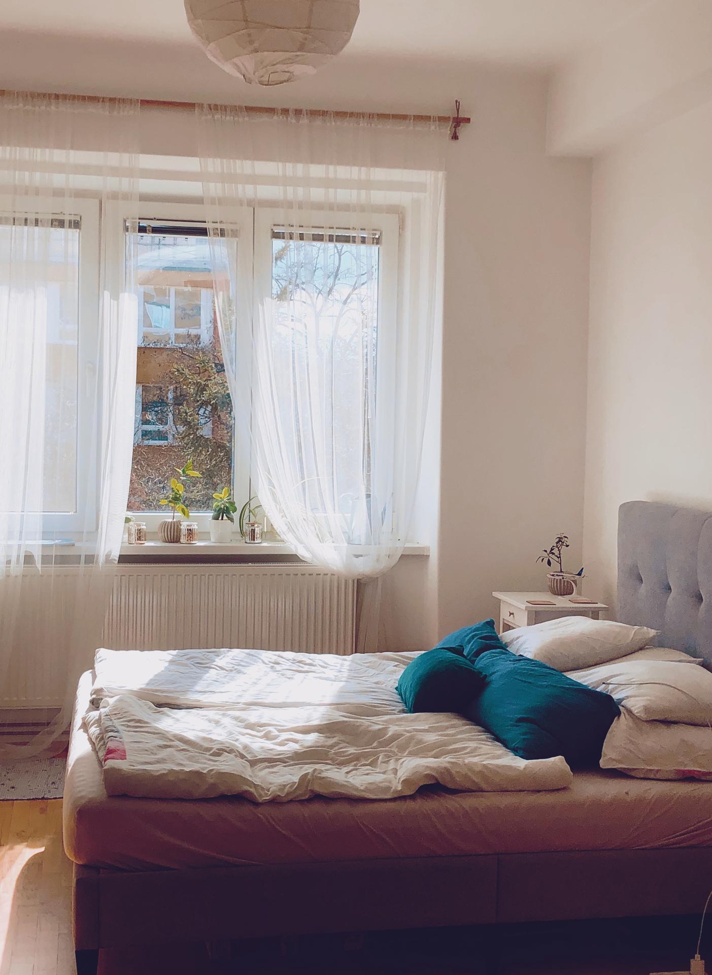 Stále na starém bytě.. aspoň je hezky svítí.. tak jsem se vrhla na mytí oken :D - Obrázek č. 1