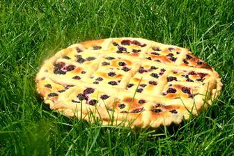 mřížkovaný koláč s tvarohem a ostružinami