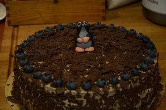 světlý piškot s lehkým čokoládový krémem, čokoládou a borůvkami