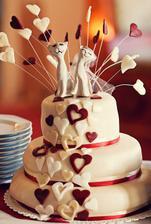 Náš kočičácký piškotový svatební dortík (Štěpánka, Kladno)