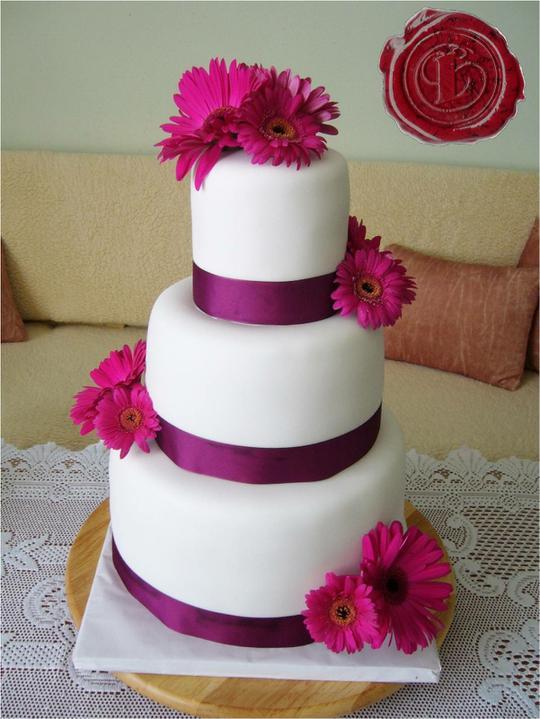 Naša svadba - jedna torta krajšia ako druhá :-)