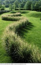 Trávy jsou taky dobrý prvek v zahradě a organické křivky jakbysmet.