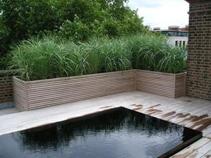 V jednoduchosti je krása = městský bazén s jednodruhovou výsadbou kolem