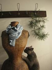Když má kočka ráda pannu ...