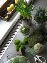 jeden menší jarní nákup (původně doprovod mámy na výstavu orchidejí)