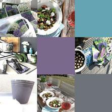 a zde takový souhrn aneb ... jaro 2011 - oběd na terase 26. února :)
